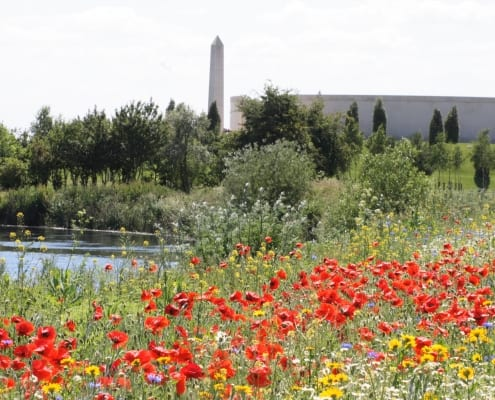 National Memorial Arboretum TOR Systems Customer